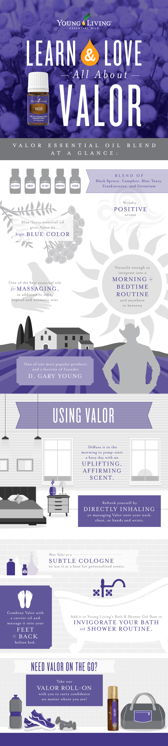 blog-Learn-Love-All-About-Valor-Infographic-Update_Infographic_US_v4-3-UPDATE
